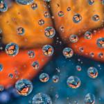 קורס מַיְינְדְפוּלְנֶס- MBSR בקיבוץ סער: ספטמבר 2019